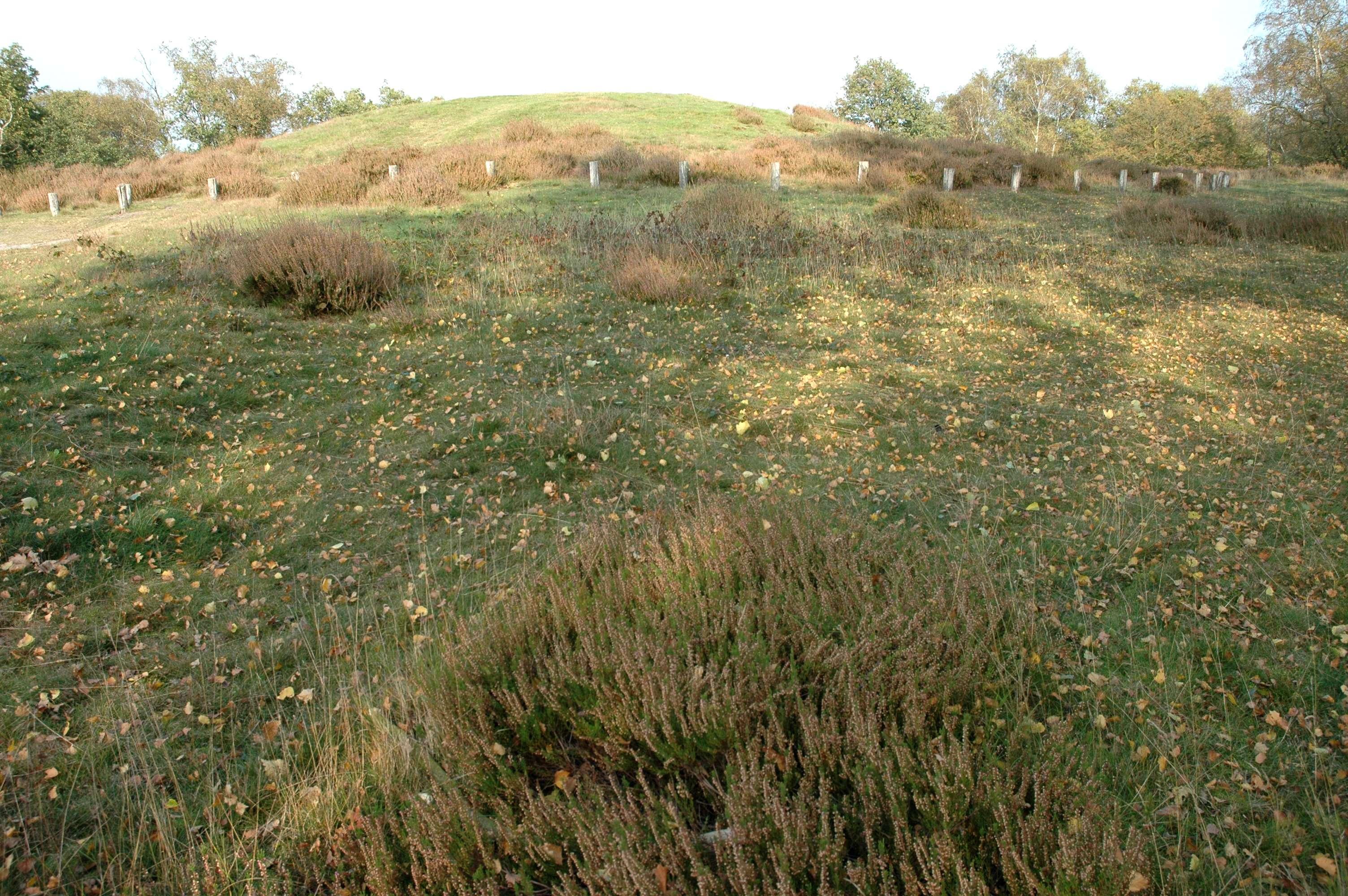 Geschiedenis in het groen @ Ontvangstlocatie Jachthut Op den Hamer | Wellerlooi | Limburg | Nederland
